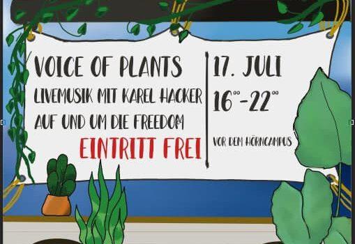 """Voice of Plants"" Livemusik mit Karel Hacker"